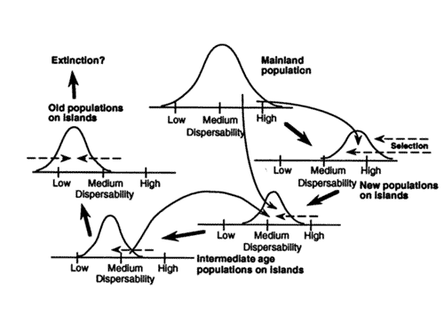 Cody and Overton 1996, Figure 1