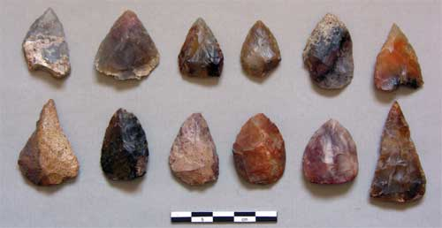MSA points from Rhino Cave, figure 4 from Coulson et al. 2011