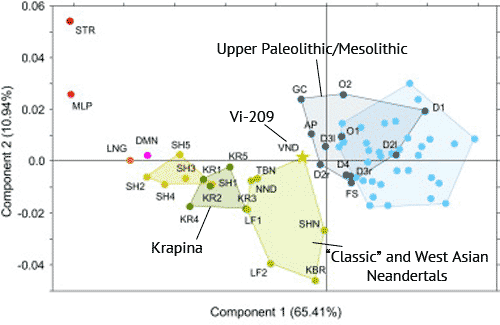 Figure 3a from Di Vincenzo et al. 2012