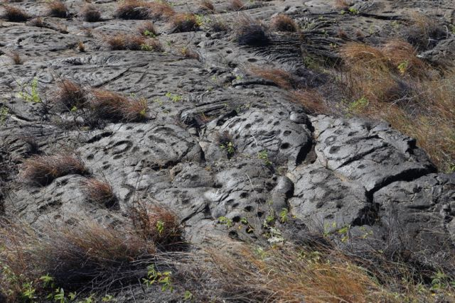 Petroglyphs umbilical dots from Hawaii Volcanoes National Park