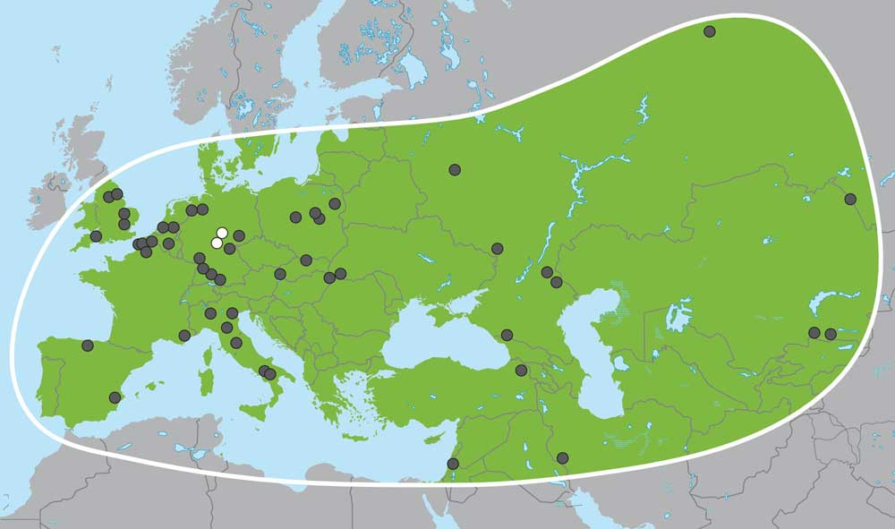 Palaeoloxodon sites across western Eurasia, from Meyer et al. 2017