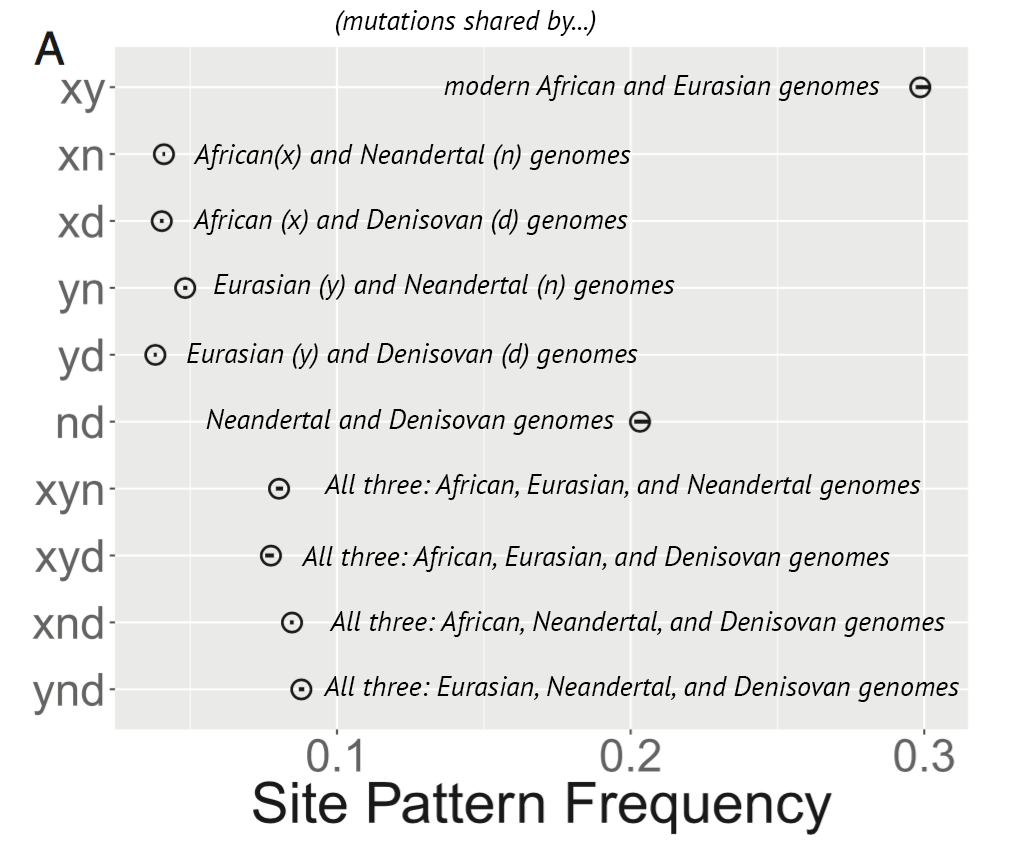 Rogers site frequency results
